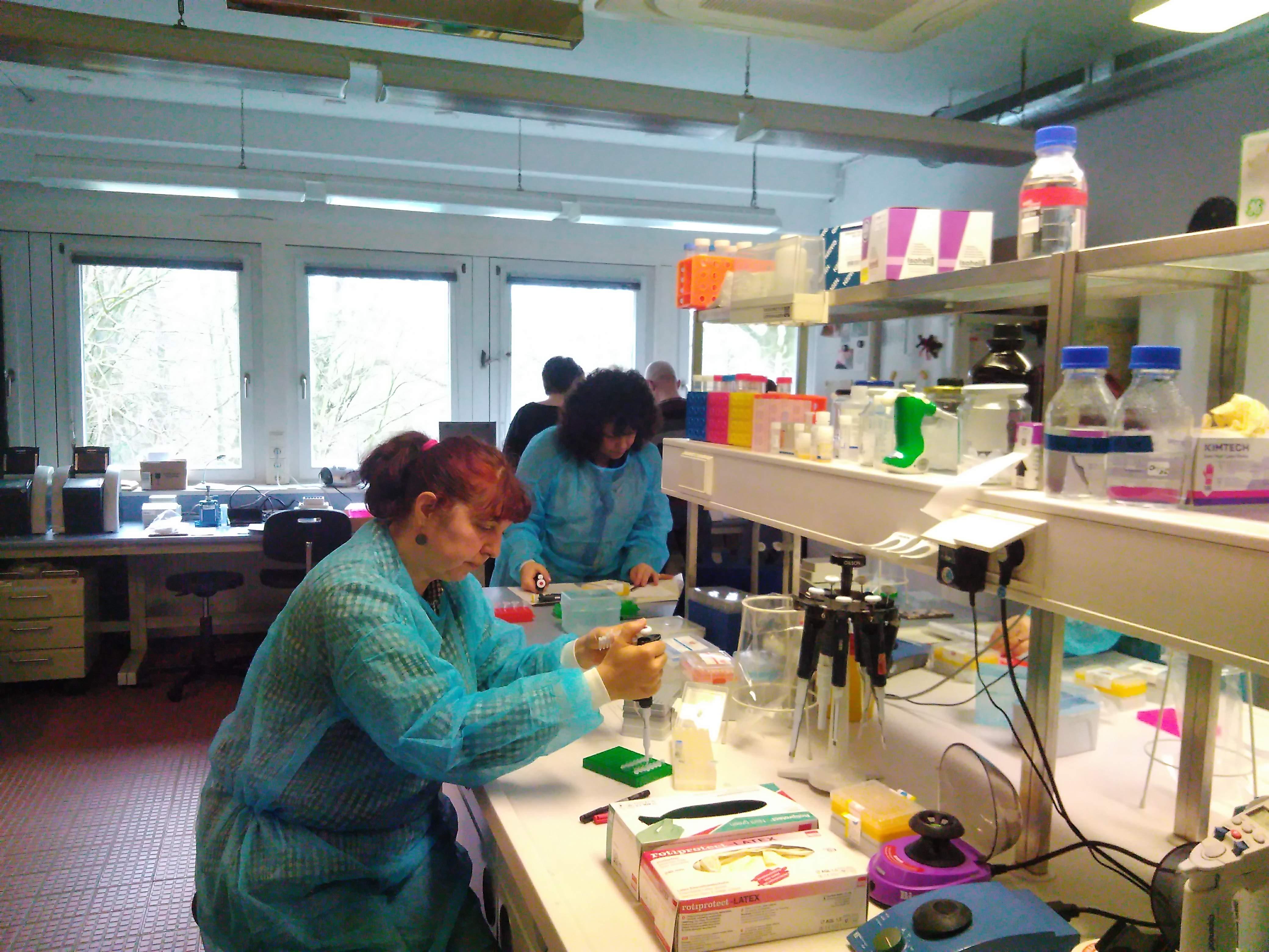 Ангажирането на правоприлагащите институции е важна стъпка в опазването на дунавските есетри