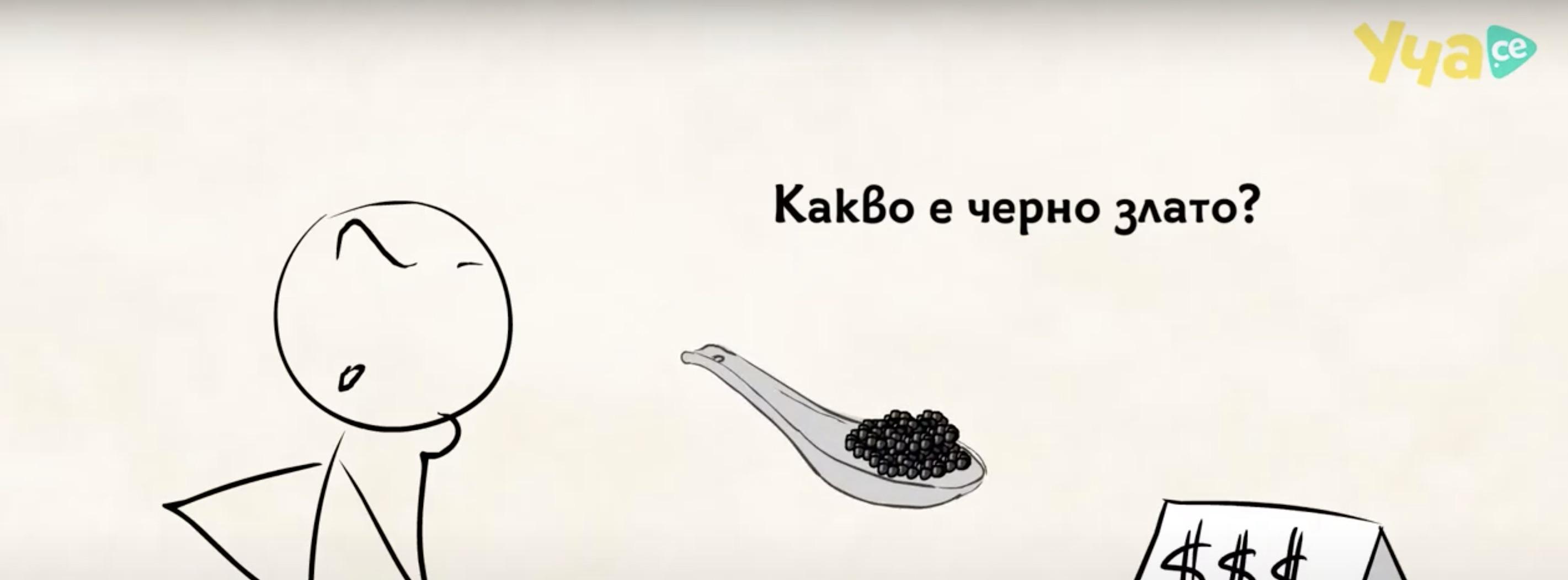 Видео урок: Живот за дунавските есетри